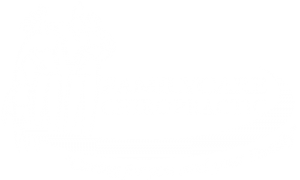 Family Care Chiropractic and Wellness Logo- Fishers IN